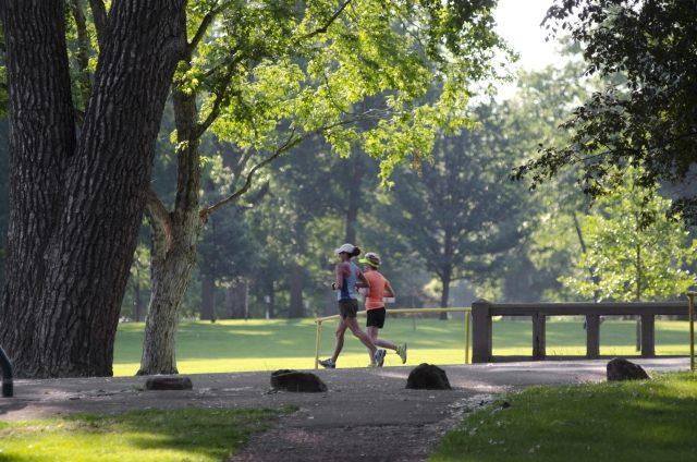 公園でランニングをする姿